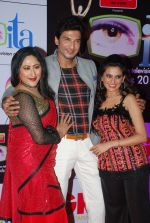 Manish Raisinghani, Jayati Bhatia at ITA Awards red carpet in Mumbai on 1st Nov 2014 (502)_545635eb19651.JPG