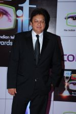 Sashi Ranjan at ITA Awards red carpet in Mumbai on 1st Nov 2014 (333)_545637996a360.JPG