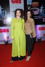 Simone Singh, Sanjeeda Sheikh at ITA Awards red carpet in Mumbai on 1st Nov 2014 (304)_545637b4a85b9.JPG