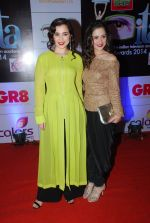Simone Singh, Sanjeeda Sheikh at ITA Awards red carpet in Mumbai on 1st Nov 2014 (307)_545637b5ef2b9.JPG