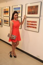 Kavita Verma at Melted core photo exhibition in Kalaghoda, Mumbai on 4th Nov 2014 (13)_545a19f1a42f3.JPG