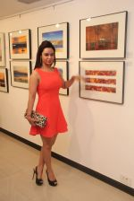 Kavita Verma at Melted core photo exhibition in Kalaghoda, Mumbai on 4th Nov 2014 (14)_545a19f28d99b.JPG