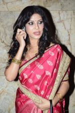 Nandana Sen at Rang Rasiya screening in Lightbox, Mumbai on 4th Nov 2014 (25)_545a1bcd8063d.JPG