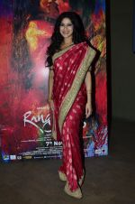 Nandana Sen at Rang Rasiya screening in Lightbox, Mumbai on 4th Nov 2014 (27)_545a1bcf52edf.JPG
