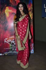 Nandana Sen at Rang Rasiya screening in Lightbox, Mumbai on 4th Nov 2014 (30)_545a1bd208076.JPG