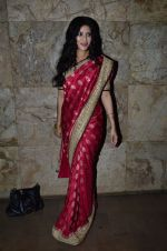 Nandana Sen at Rang Rasiya screening in Lightbox, Mumbai on 4th Nov 2014 (33)_545a1bd40ad99.JPG