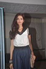 Fleur Xavier at the First Look and Music Launch of the film Take It Easy in Andheri, Mumbai on 5th Nov 2014 (58)_545b858530a0a.JPG