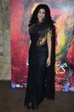 Nandana Sen at the Screening of the film Rang Rasiya in Lightbox on 5th Nov 2014 (42)_545b821d32733.JPG