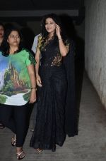 Nandana Sen at the Screening of the film Rang Rasiya in Lightbox on 5th Nov 2014 (9)_545b821a73d2b.JPG
