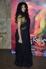 Nandana Sen at the Screening of the film Rang Rasiya in Lightbox on 5th Nov 2014 (41)_545b821bc7ca5.JPG