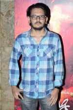 Vishesh Bhatt at the Screening of the film Rang Rasiya in Lightbox on 5th Nov 2014 (46)_545b84934bdf9.JPG
