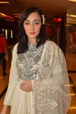 Feryna Wazheir at Rang Rasiya premiere in Cinemax, Mumbai on 6th Nov 2014 (30)_545c8b4a1f99e.JPG