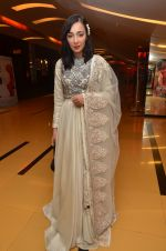 Feryna Wazheir at Rang Rasiya premiere in Cinemax, Mumbai on 6th Nov 2014 (38)_545c8b4f3d232.JPG