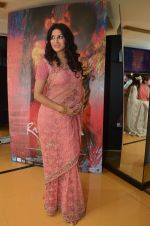 Nandana Sen at Rang Rasiya premiere in Cinemax, Mumbai on 6th Nov 2014 (29)_545c8cc9437eb.JPG