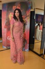 Nandana Sen at Rang Rasiya premiere in Cinemax, Mumbai on 6th Nov 2014 (32)_545c8ccb73c1b.JPG