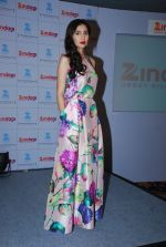 Mahira Khan Pakistani actress meet for Zindagi channel in Leela Hotel on 11th Nov 2014 (12)_54636de835c50.JPG
