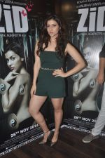 Barbie Handa at Zid interviews in Mumbai on 13th Nov 2014 (24)_5465d0c390bb1.JPG