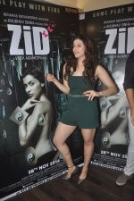 Barbie Handa at Zid interviews in Mumbai on 13th Nov 2014 (28)_5465d0c7ec043.JPG
