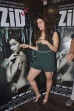 Barbie Handa at Zid interviews in Mumbai on 13th Nov 2014 (29)_5465d0c8d55e0.JPG