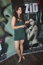 Barbie Handa at Zid interviews in Mumbai on 13th Nov 2014 (30)_5465d0c9c3488.JPG