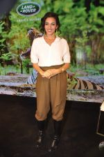 Neha Sareen at Jaguar Land Rover talk in Tote, Mumbai on 18th Nov 2014 (9)_546c5b8ac88ed.JPG