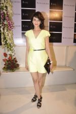 Saumya Tandon at Sonaakshi Raaj store launch in Bandra, Mumbai on 20th Nov 2014 (93)_54707a0a6d82f.JPG