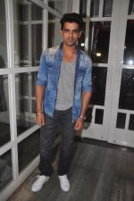 Mohit Malik at Doli Armano Ki success bash in Villa 69 on 2nd Dec 2014 (173)_547eb732130bc.JPG