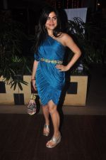 Shenaz Treasurywala at Main Aur Mr Right bash in Levo, Mumbai on 10th Dec 2014 (55)_54894586a17f1.JPG