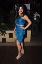 Shenaz Treasurywala at Main Aur Mr Right bash in Levo, Mumbai on 10th Dec 2014 (56)_5489458812a44.JPG