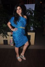 Shenaz Treasurywala at Main Aur Mr Right bash in Levo, Mumbai on 10th Dec 2014 (58)_548945898ebd8.JPG