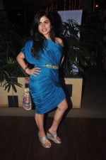 Shenaz Treasurywala at Main Aur Mr Right bash in Levo, Mumbai on 10th Dec 2014 (59)_5489458aee73d.JPG