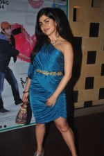 Shenaz Treasurywala at Main Aur Mr Right bash in Levo, Mumbai on 10th Dec 2014 (63)_54894590e9904.JPG