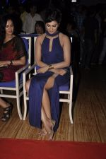 Sayali Bhagat at Homestay film music launch in Mumbai on 13th Dec 2014 (12)_548e9d48813de.JPG
