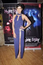 Sayali Bhagat at Homestay film music launch in Mumbai on 13th Dec 2014 (29)_548e9d4c6f9b6.JPG