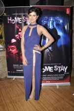Sayali Bhagat at Homestay film music launch in Mumbai on 13th Dec 2014 (30)_548e9d4d4f7d3.JPG