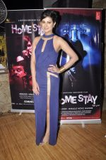 Sayali Bhagat at Homestay film music launch in Mumbai on 13th Dec 2014 (31)_548e9d4e3e2cd.JPG
