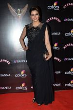 Aamna Sharif at Sansui Stardust Awards red carpet in Mumbai on 14th Dec 2014 (364)_548fceb65f0eb.JPG