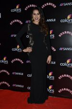 Anisa at Sansui Stardust Awards red carpet in Mumbai on 14th Dec 2014 (700)_548fceb900951.JPG