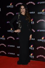 Anisa at Sansui Stardust Awards red carpet in Mumbai on 14th Dec 2014 (702)_548fcebb8c8a1.JPG