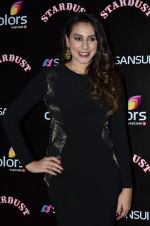 Anisa at Sansui Stardust Awards red carpet in Mumbai on 14th Dec 2014 (707)_548fcebfecd3c.JPG