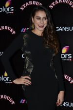 Anisa at Sansui Stardust Awards red carpet in Mumbai on 14th Dec 2014 (709)_548fcec1ed751.JPG