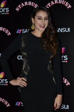 Anisa at Sansui Stardust Awards red carpet in Mumbai on 14th Dec 2014 (711)_548fcec45adfe.JPG