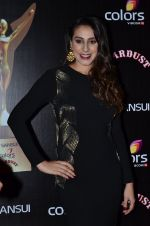 Anisa at Sansui Stardust Awards red carpet in Mumbai on 14th Dec 2014 (716)_548fcecb33ddf.JPG