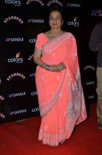 Asha Parekh at Stardust Awards 2014 in Mumbai on 14th Dec 2014 (973)_5490345c06308.JPG