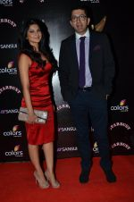 Jennifer Winget at Sansui Stardust Awards red carpet in Mumbai on 14th Dec 2014 (953)_548fd064712a1.JPG
