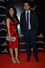 Jennifer Winget at Sansui Stardust Awards red carpet in Mumbai on 14th Dec 2014 (954)_548fd0660a3d0.JPG