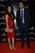Jennifer Winget at Sansui Stardust Awards red carpet in Mumbai on 14th Dec 2014 (956)_548fd06953b08.JPG