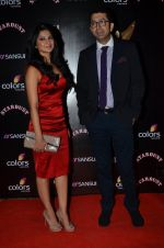 Jennifer Winget at Sansui Stardust Awards red carpet in Mumbai on 14th Dec 2014 (957)_548fd06a6e927.JPG