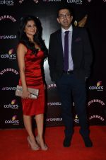 Jennifer Winget at Sansui Stardust Awards red carpet in Mumbai on 14th Dec 2014 (958)_548fd06bab3cc.JPG