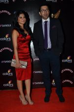 Jennifer Winget at Sansui Stardust Awards red carpet in Mumbai on 14th Dec 2014 (959)_548fd06d470ec.JPG